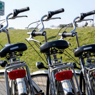 Découvrez notre location de vélos sur le site du Parc du Crocodile Rouge